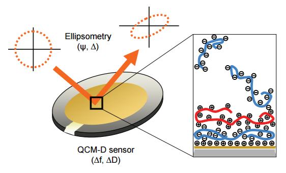 ellipsometry-qcmd.png