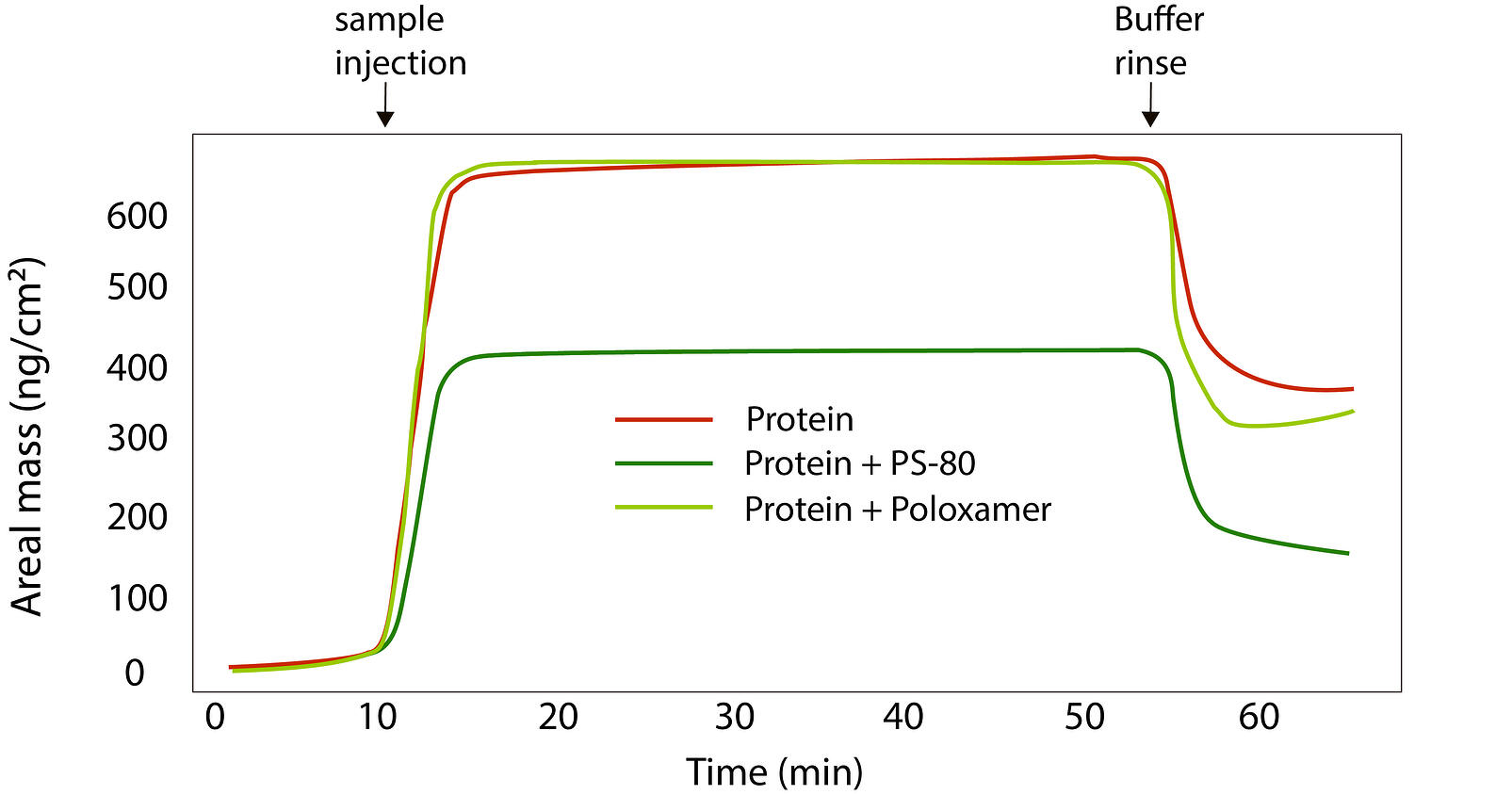 Protein adsorption to Silicone oil with and without surfactant-1
