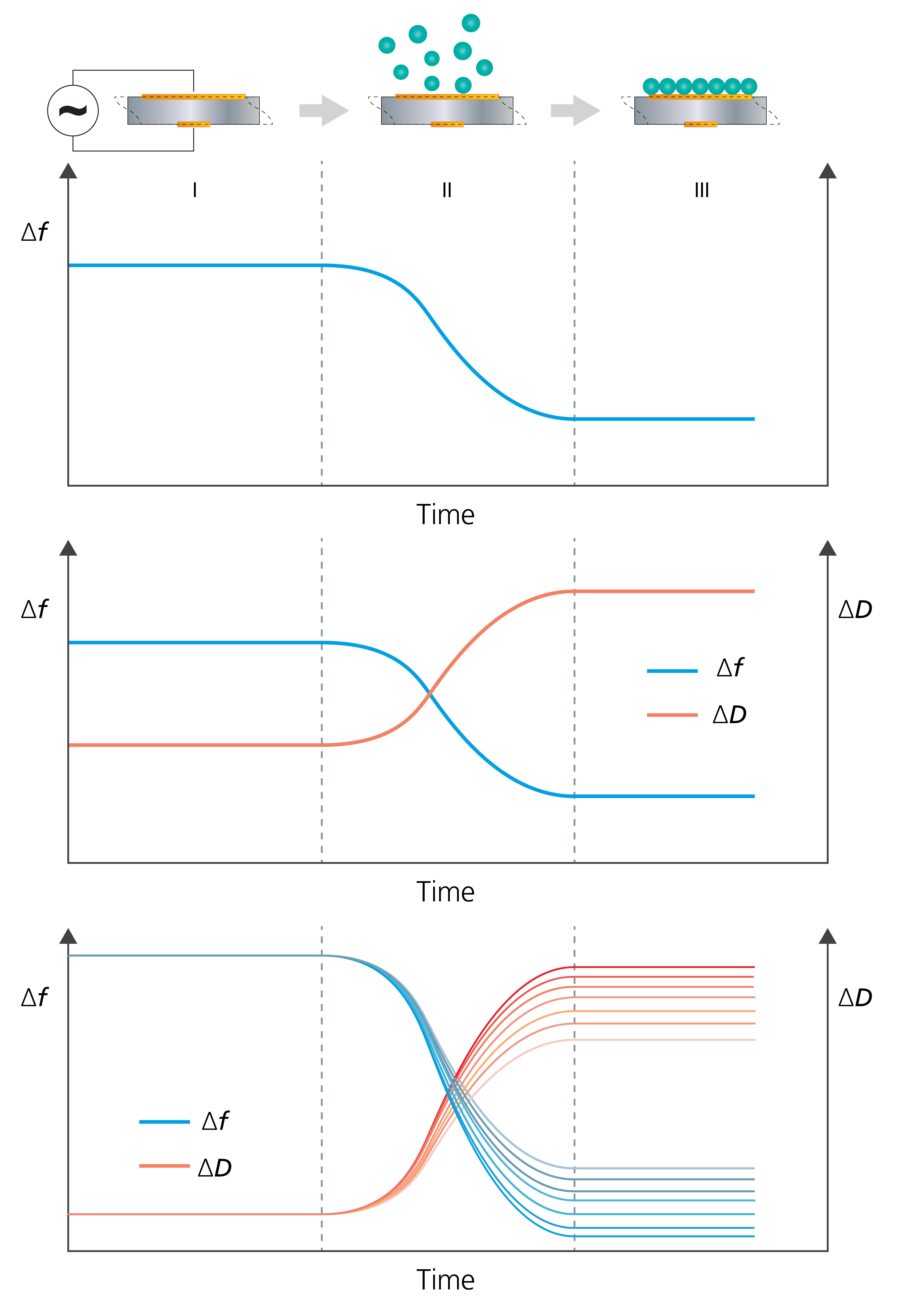 QCM single harmonic vs multiharmonic