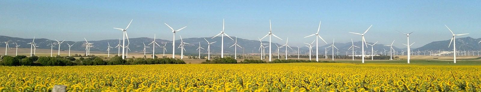 Renewable energy windmills